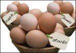 Ne mettez pas tous vos œufs dans le même panier